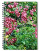 Fall Colors In Florida Spiral Notebook