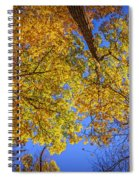 Fall Colors In The Sky  Spiral Notebook