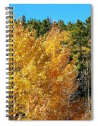 Fall Colors On The Colorado Aspen Trees Spiral Notebook