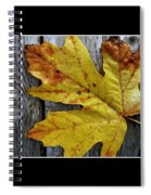 Fall Colors Triptych Spiral Notebook
