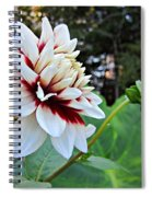 Fall Dahlia Spiral Notebook