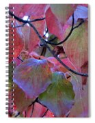 Fall Dogwood Leaf Colors 2 Spiral Notebook