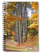 Fall Driveway And Coco The Dog Spiral Notebook