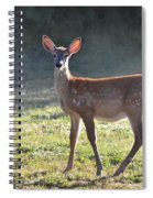 Fall Fawn Spiral Notebook