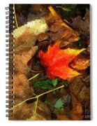 Fall Flames Out Spiral Notebook
