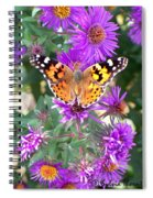 Fall Flutterby Spiral Notebook
