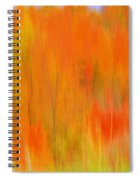 Fall Foliage Abstract Spiral Notebook
