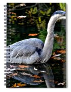 Fall Foliage And Fowl Spiral Notebook