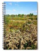 Fall Goldenrod Field Spiral Notebook