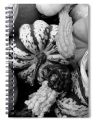 Fall Gourds Black And White Spiral Notebook