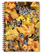 Fall Grapes Spiral Notebook