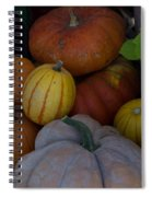 Fall Harvest Spiral Notebook
