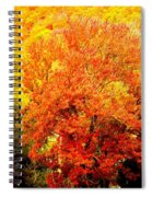Fall In Full Bloom Spiral Notebook