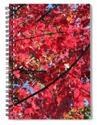 Fall In Illinois Spiral Notebook