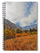 Fall In Lundy Canyon Spiral Notebook