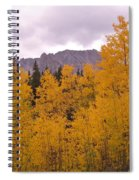 Fall In Maroon Bells Spiral Notebook