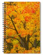 Fall In Pennsylvania Spiral Notebook