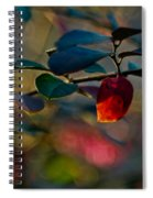 Fall In Texas Spiral Notebook
