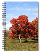 Fall In The Pastures Spiral Notebook