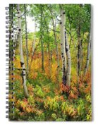 Fall In The Tetons Spiral Notebook