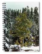 Fall Into Winter Spiral Notebook