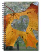 Fall Ing In Love Spiral Notebook