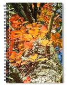 Fall Ivy On Pine Tree Spiral Notebook