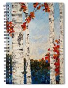 Fall Lake Birches Spiral Notebook