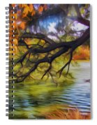 Fall Landscape 4 Spiral Notebook