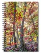 Fall Laser Beams Spiral Notebook