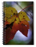 Red And Yellow Maple Leaf Spiral Notebook