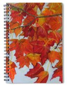 Fall Leaves Spiral Notebook