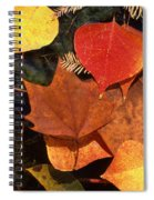 Fall Leaves I I Spiral Notebook