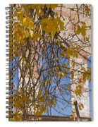 Fall Leaves On Open Windows Jerome Spiral Notebook
