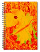 Fall Maple Spiral Notebook