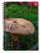 Fall Mushrooms Spiral Notebook