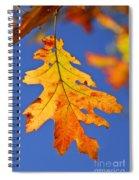 Fall Oak Leaf Spiral Notebook