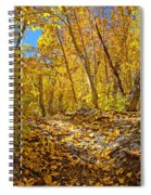 Fall On The Forest Floor Spiral Notebook