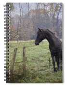 Fall Pasture Spiral Notebook