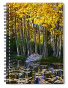 Fall Pond In Mammoth Spiral Notebook