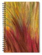 Fall Prairie Grass By Jrr Spiral Notebook