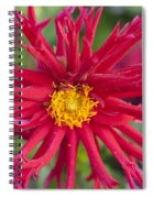 Fall Rains Spiral Notebook