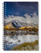 Fall Reflection Pond Spiral Notebook