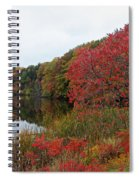 Fall Reflection Spiral Notebook