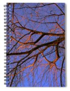 Fall Reflections By Diana Sainz Spiral Notebook