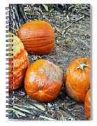 Fall Rejects Spiral Notebook