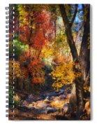 Fall Splendor  Spiral Notebook