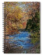 Fall Stream Spiral Notebook