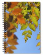 Fall Time Spiral Notebook