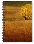 Fall Tree And Field #1 Spiral Notebook